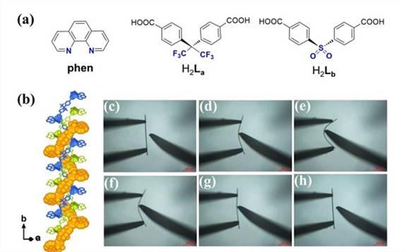 中科院高能所核能化学团队柔性晶体研究取得重要进展!