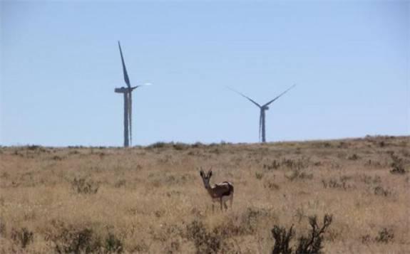 央企南非风电项目已为当地输送近20亿千瓦时电能