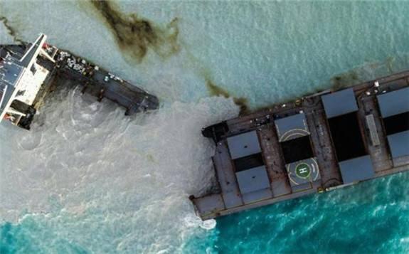 """日本货轮漏油事件令毛里求斯生态面临""""灭顶之灾"""""""