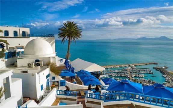 突尼斯2020年前八个月共宣布37个投资项目,其中9个可再生能源项目
