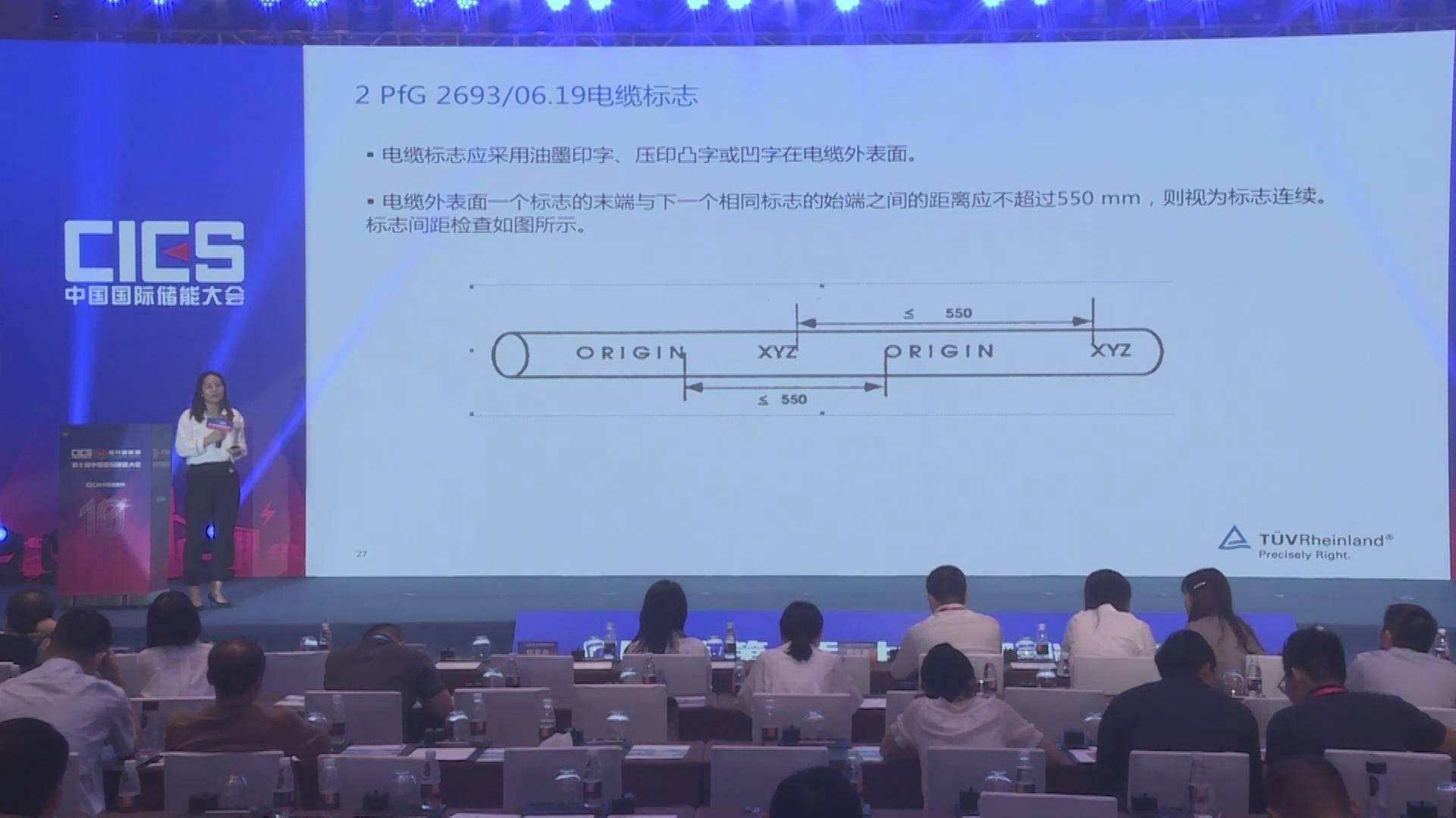 张丽颖:电池储能系统用电缆2PfG 2693/06.19简介