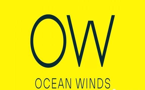 全球海上风电行业又一家开发商巨头诞生!