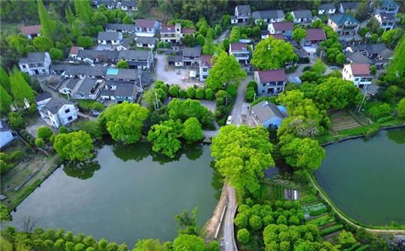 国际论坛:中国走绿色发展之路,是符合时代大势的正确选择
