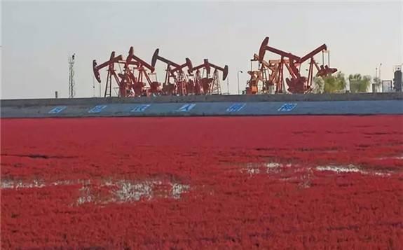 辽河油田成功降低压裂液对油田储层伤害