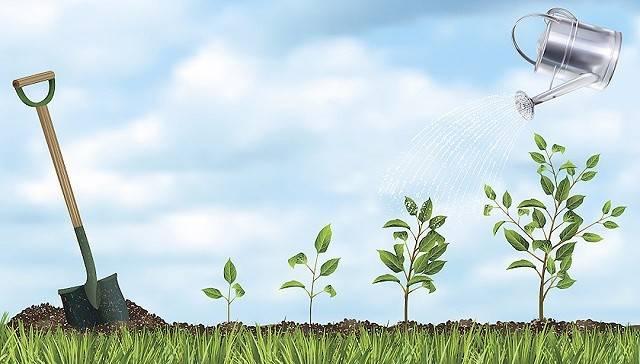 碳排放大战①:前世今生