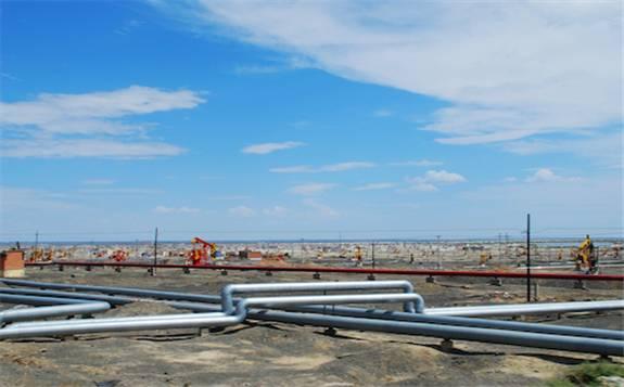 牢牢守住能源安全底线 推动能源转型实现高质量发展