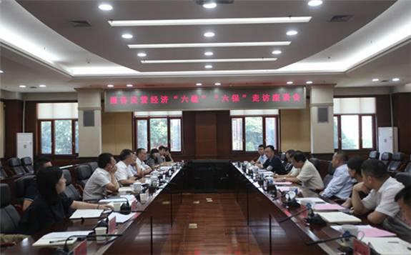 湖南省發展改革委周海兵主任主持召開風光電發展、抽水蓄能規劃建設專題會議