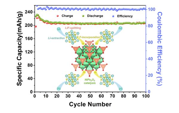上海硅酸鹽所在金屬氟/硫基電池的界面催化和限域研究中取得進展