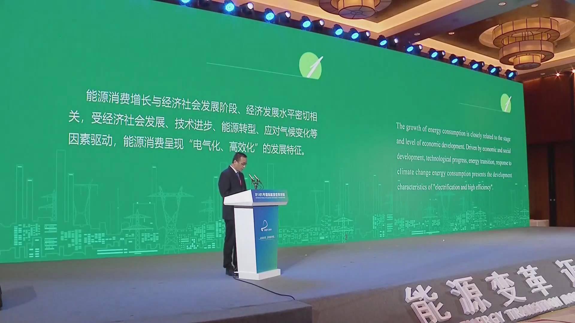 王耀華:電網綠色發展遠景研究中方報告