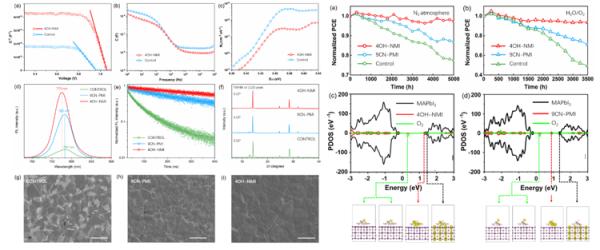 福建物构所钙钛矿太阳能电池研究获进展