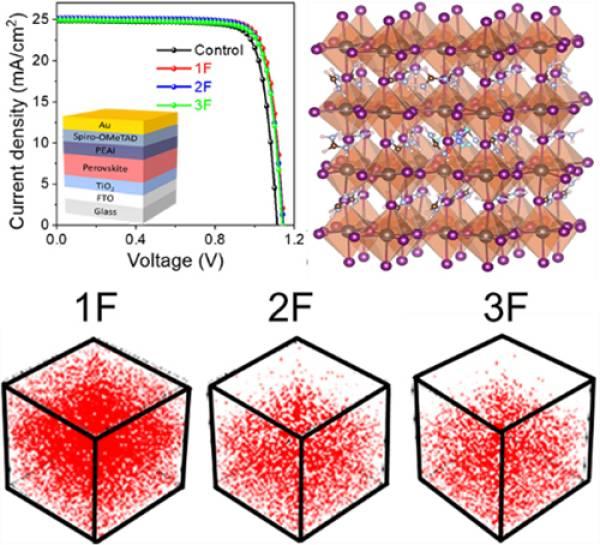 大连化物所等在钙钛矿太阳电池添加剂工程研究中取得进展