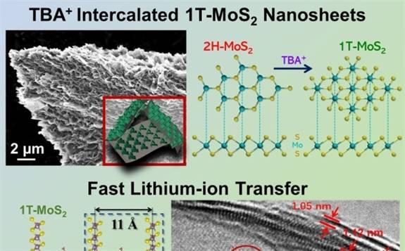 電工所在高性能MXene基鋰離子電容器研究中獲進展