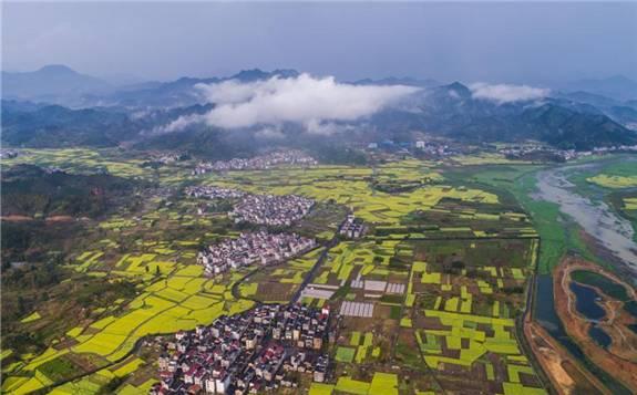 中国成全球覆盖温室气体排放量最大碳市场 应对气候变化成效积极
