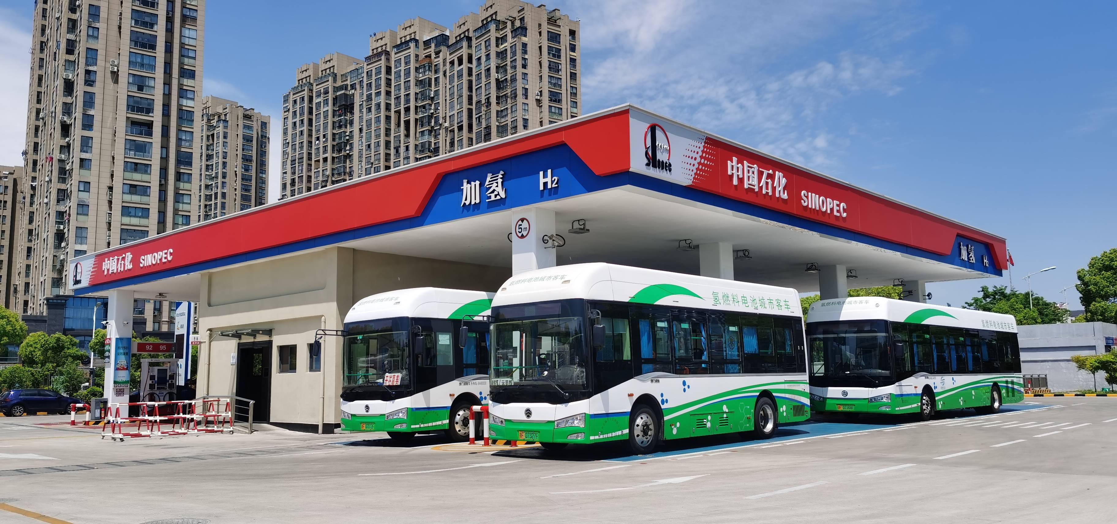 """趙東:中國石化聚焦""""雙碳""""目標打造綠色能源企業"""