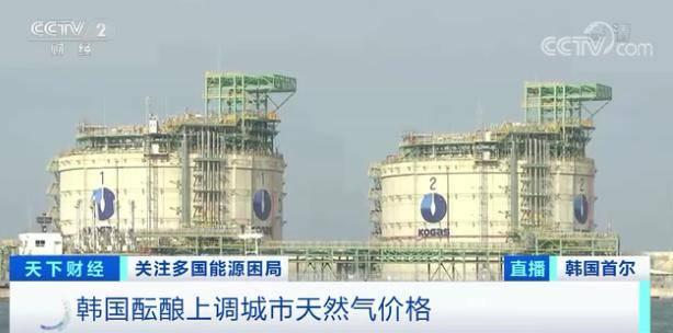 """""""能源危机""""扩散 亚洲多国掀恐慌性抢购 天然气价格一天暴涨超40%"""