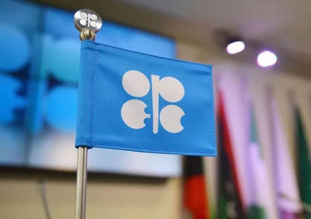 欧佩克下调今年石油产量和需求预期